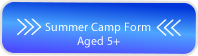 Summer Camp 5 Button